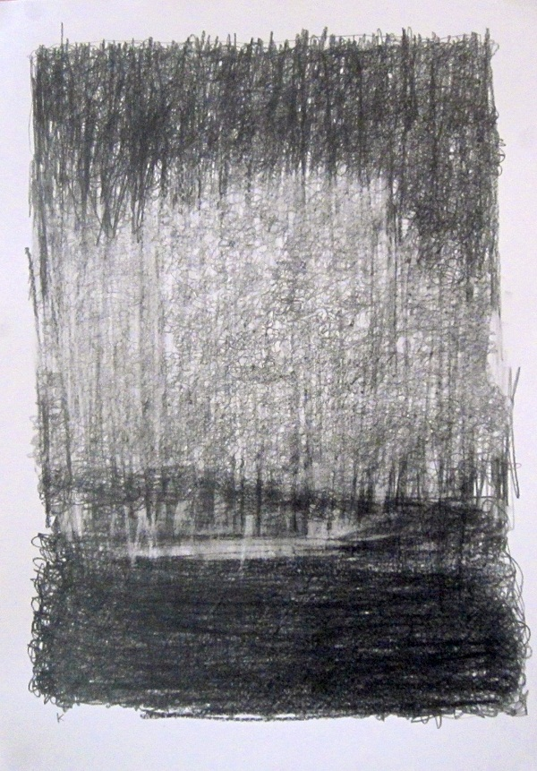 3-east-from-ba-cottage-early-morning-graphite-stick-on-paper-2013