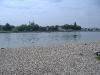 speyer-river