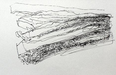 166-on-rannoch-moor-pen-2009-28-x-21-cm