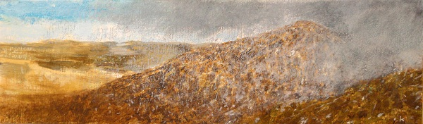 'Approaching snow shower...on the slopes of Ben Loyal, Sutherland'