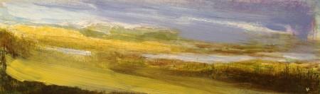 'December afternoon, Rannoch Moor'