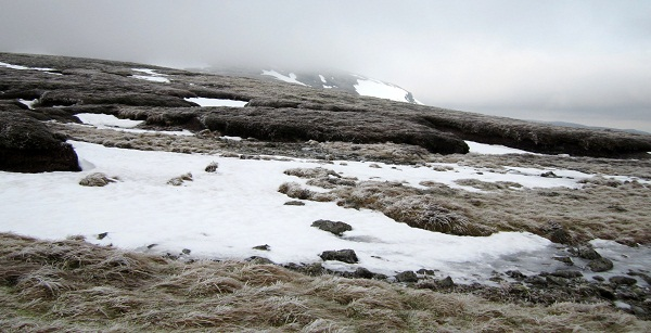 Ben Chonzie, looking towards the summit