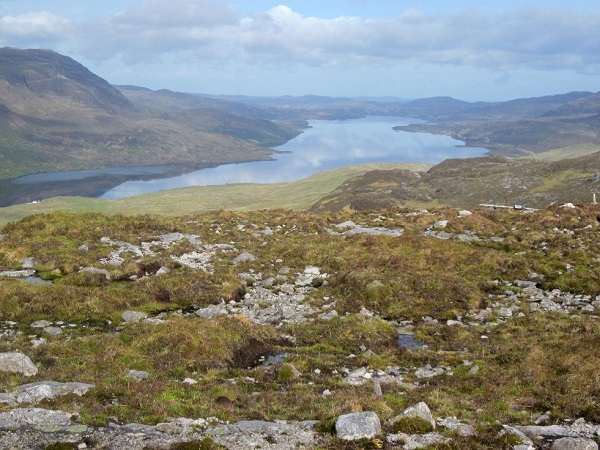 Overlooking Loch Assynt, June 4th 2015